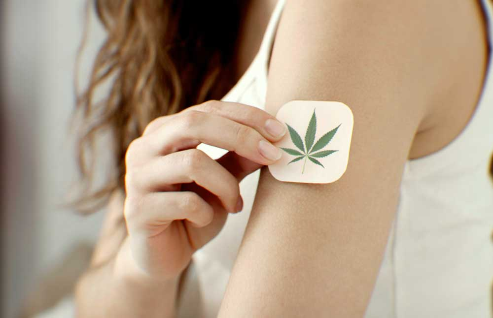 Could Patients with Kidney Cancer Find Support in Cannabis and Cannabinoids