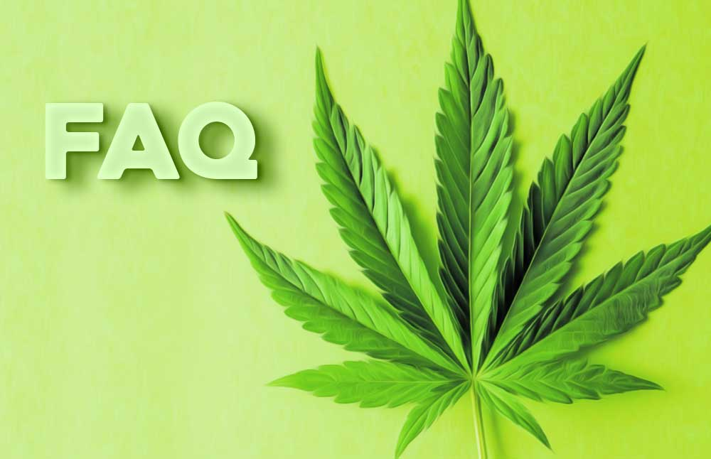FAQ About CBD: Answered