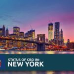 CBD Oil Legality in New York