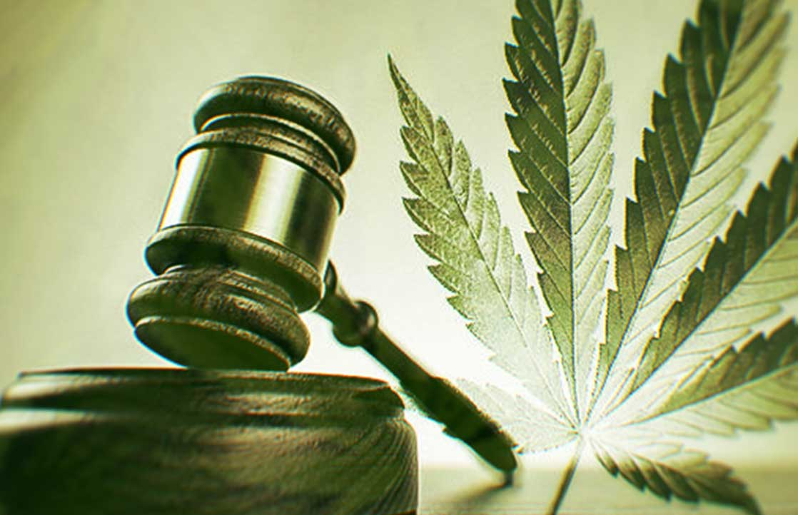 Candidates On Cannabis: Where Do The Presidential Nominees Stand On Legalization?