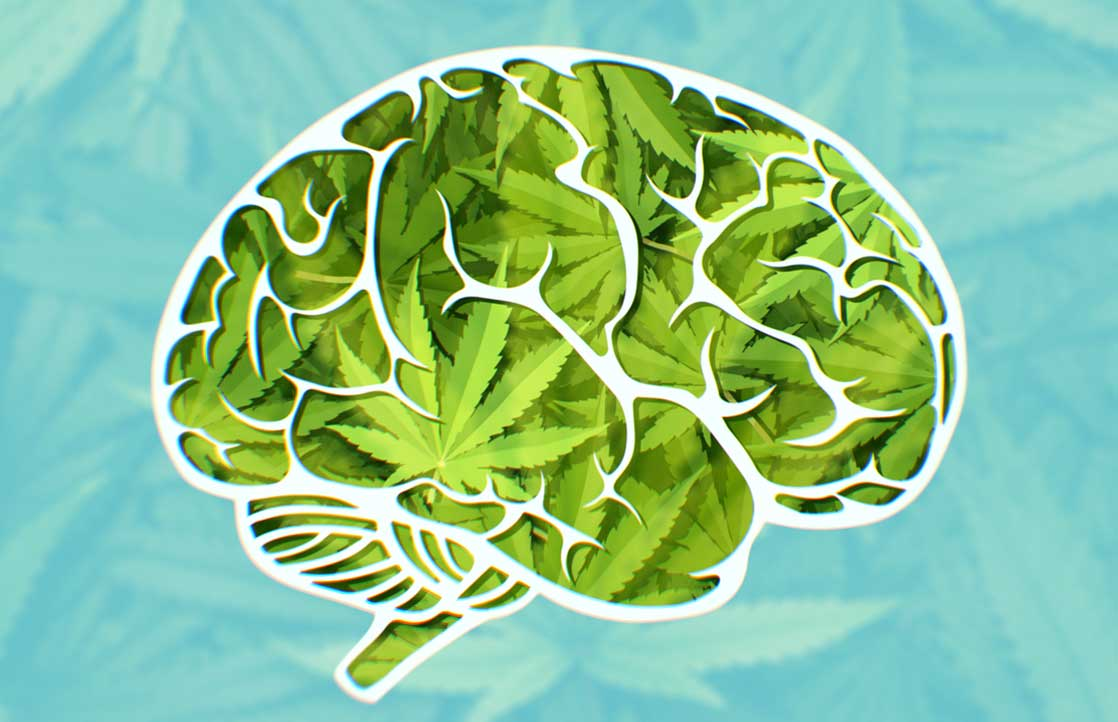 How is memory impacted by marijuana?