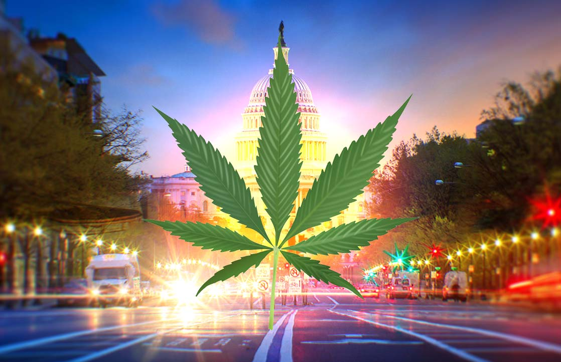 How To Get Medical Marijuana If You Live In Washington
