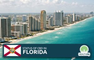 is cbd flower legal in florida