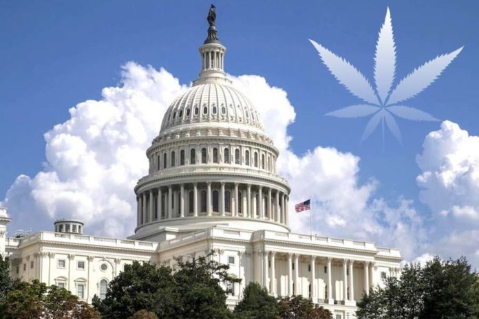 Federal Lawmakers Urged for Lawful CBD Marketing Rules by Dietary Supplement Proponents