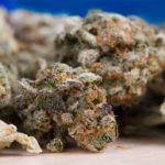 Impact-of-Medical-Cannabis-on-Chronic-Pain-to-Be-Studied