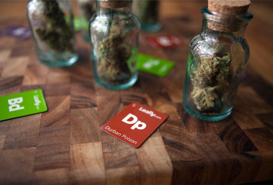 cannabis-gateway-drug-cbd