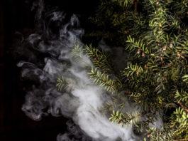 cannabis-vaping-illegal-thc-websites