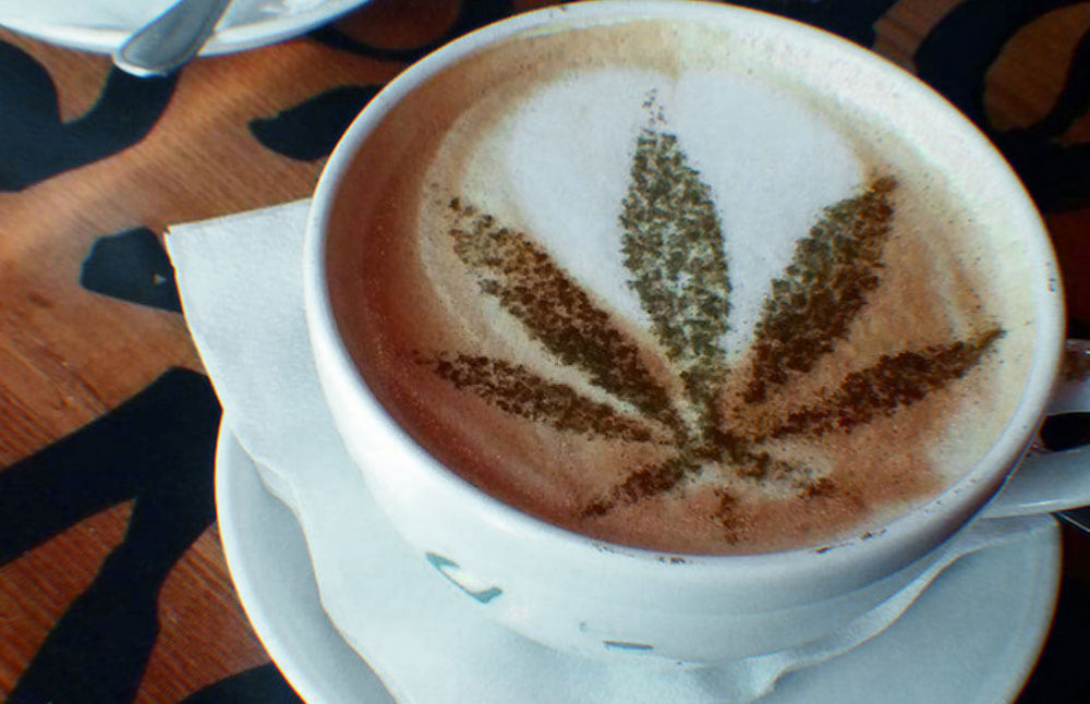 best CBD coffees