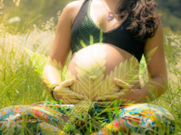cannabis-pregnancy-thc-research-study