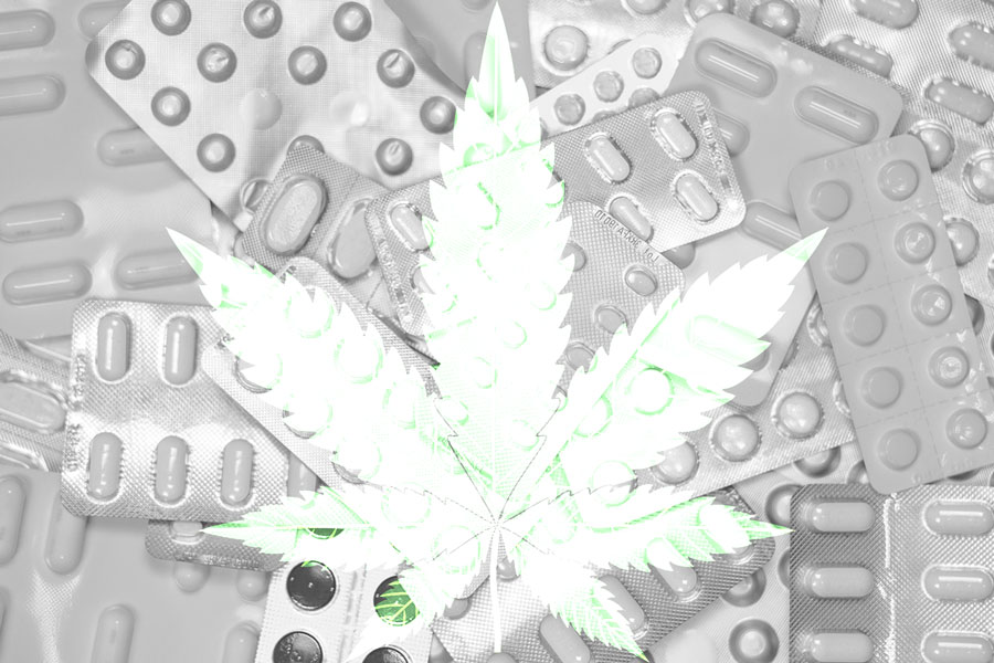 opioids-cannabis-chronic-pain-research