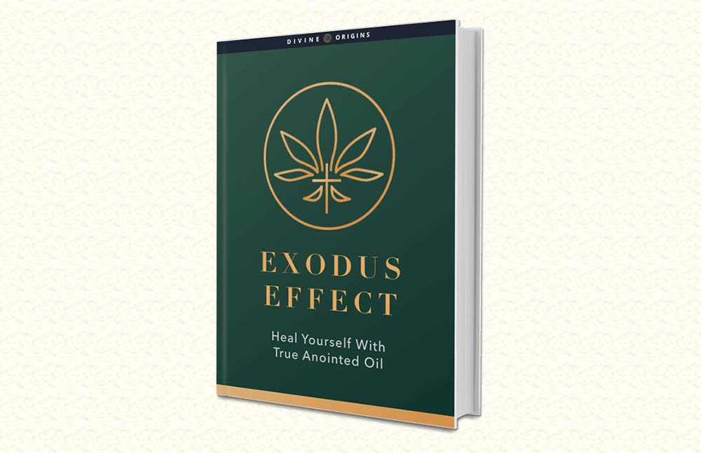 Exodus Effect: The True Holy Anointing Oil Cannabis Recipe Book
